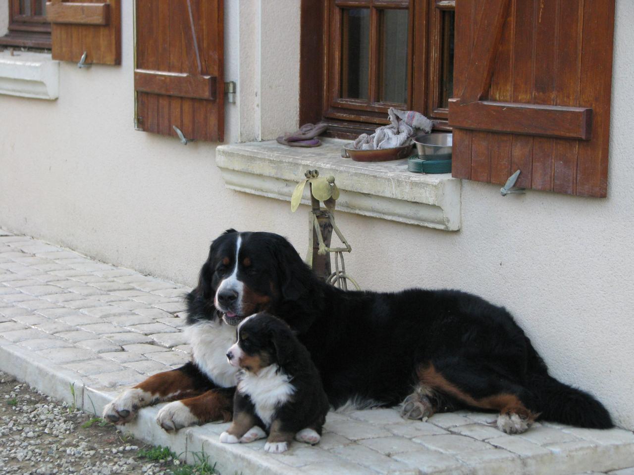 bud et un de ses fils